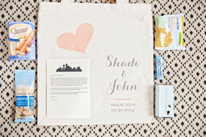 Spring Feature - Shadi + John
