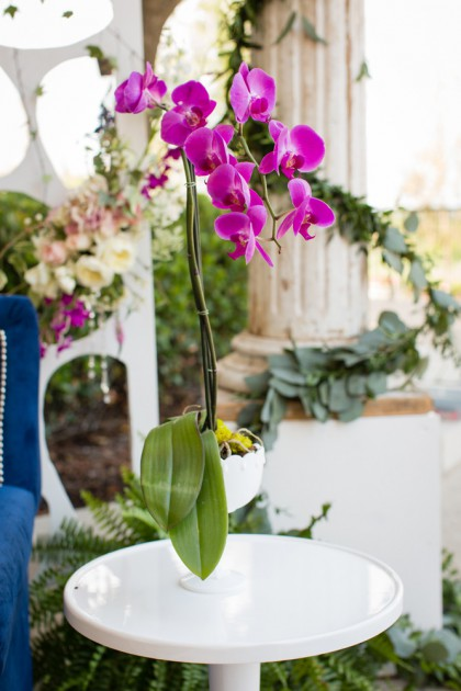 Rent It/Style It   AFR Event Furnishings & Out of the Garden