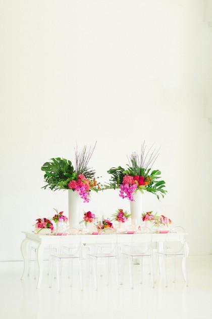 As You Wish Tabletop | Modern Tropics