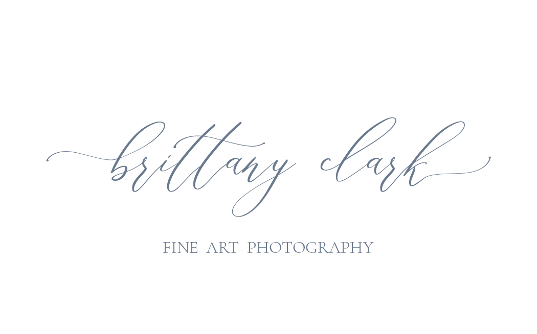 Brittany Clark Photography Photography
