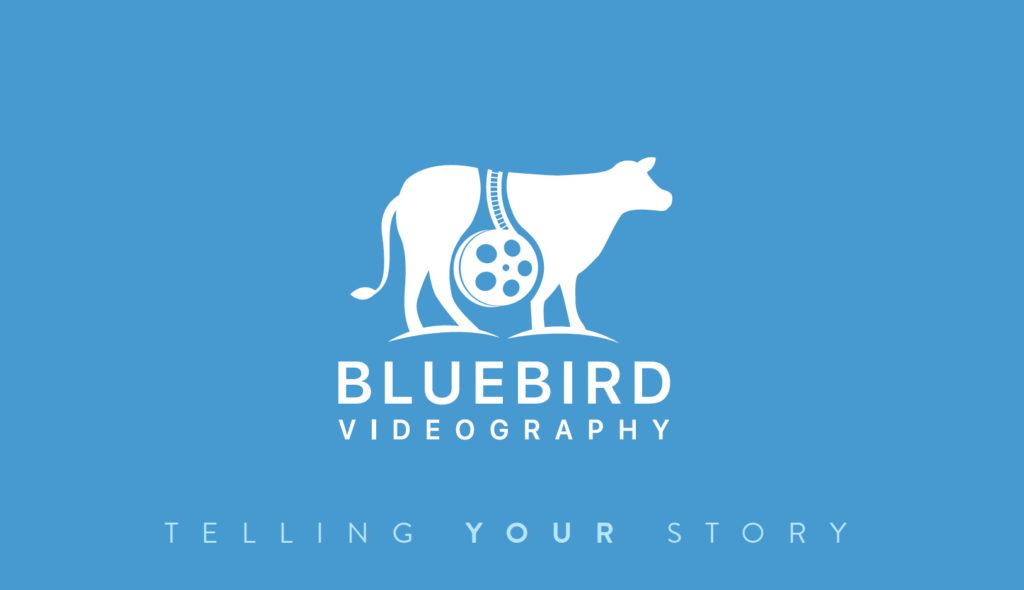 Bluebird Videography - North Texas Wedding Videography